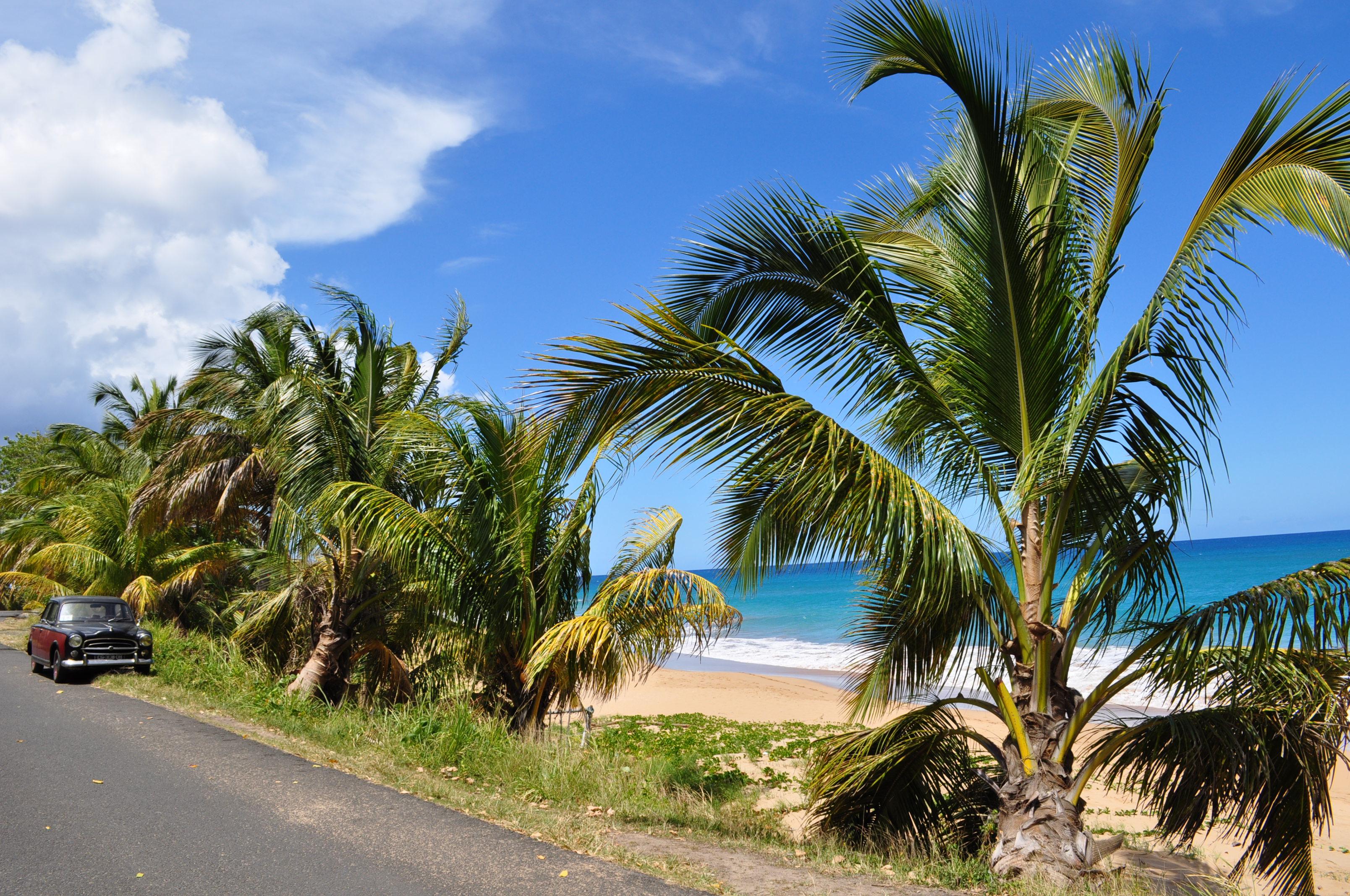 ©Caribeya, Bulwar Vwé Moun wiodący ku plażom Rifflet i La Perle.